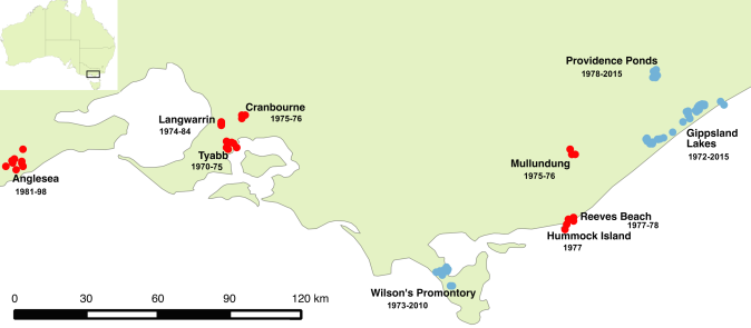 New Holland mouse detection sites across Victoria. Red dots indicate sites in areas where the species has not been detected in at least 15 years, blue dots indicate areas with more recent detections. Dates show the range of years during which New Holland mice were known at each site.